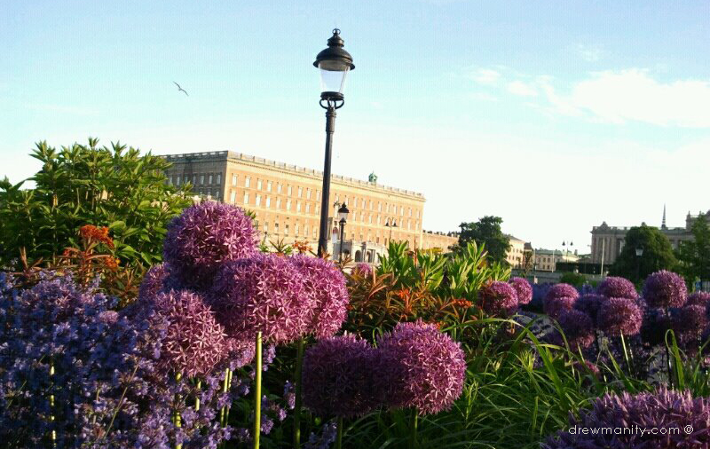 drewmanity-stockholm-sweden-capital-flowers