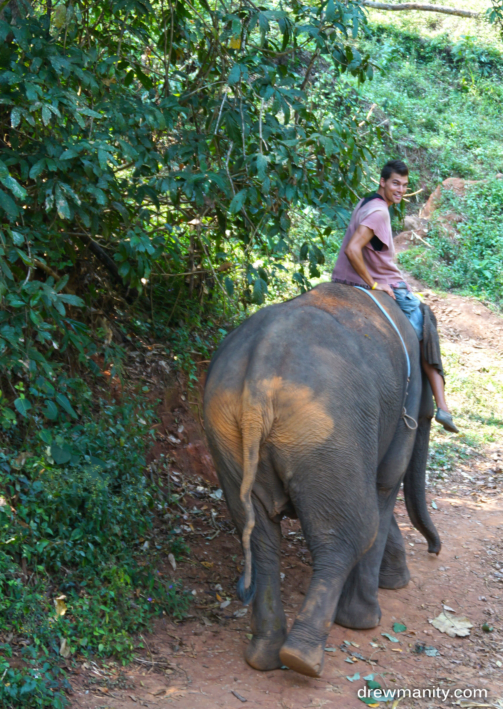 riding the elephant down hill