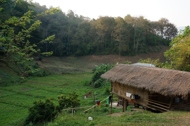Simple living Bamboo huts
