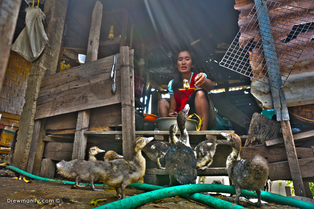 Lao-village-woman-feeding-ducks-drewmanity